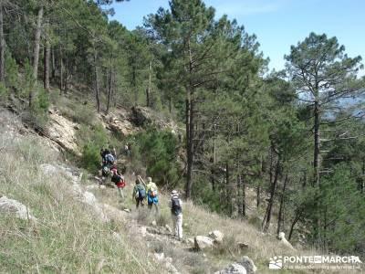 Cascadas de Gavilanes - Pedro Bernardo;a tu aire cascadas taxus baccata el castañar del tiemblo